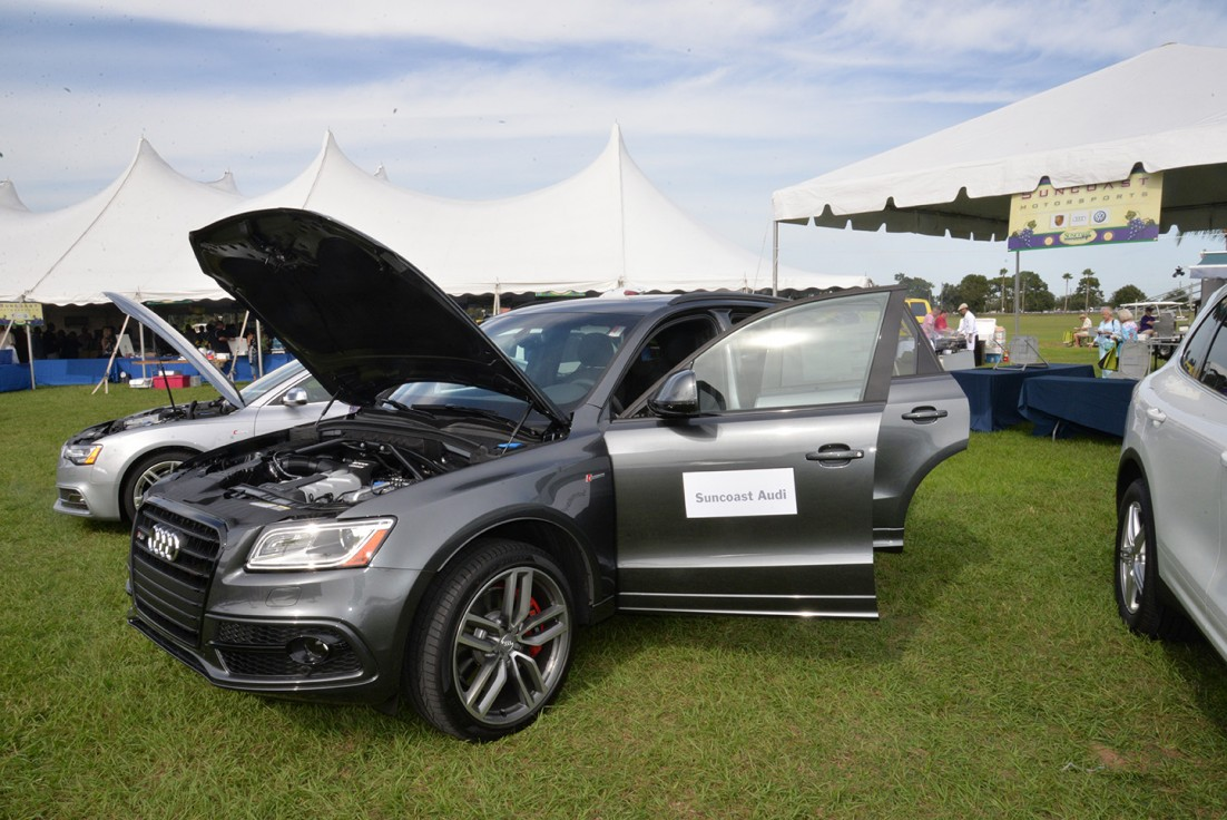 Festival Suncoast Food And Wine Fest - Suncoast audi